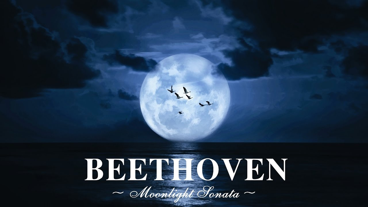 ♫ KHÔNG NGHE PHÍ 1 ĐỜI ♫ Một trong những bản nhạc hay nhất mọi thời đại của Beethoven