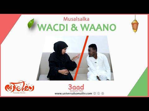 Musalsalka Wacdi & Waano 2021-Q 3aad