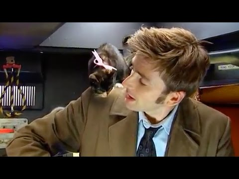 AWW! David Tennant & A Basket of Kittens  Doctor Who Confidential Series 3  Doctor Who  BBC
