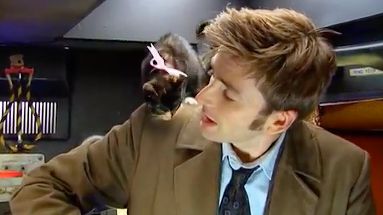 AWW! David Tennant & A Basket of Kittens   Doctor Who Confidential Series 3    Doctor Who   BBC - YouTube