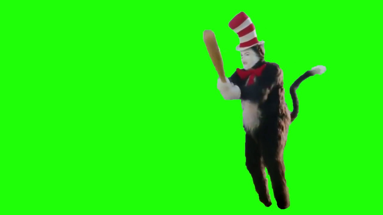 Cat In The Hat Bat Meme Green Screen With Download Link