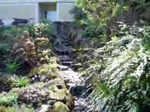 stream and pond