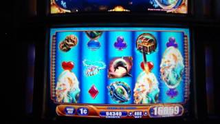 Big Win on Max Bet on Sea Tales Slot machine Bonus Round