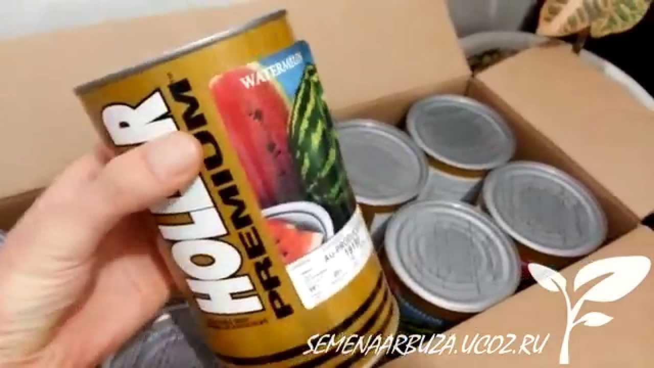 Лучшие семена томатов для открытого грунта седек: заказать семена томатов и. Теперь главной задачей становится, где купить хорошие семена.