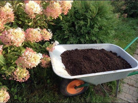 102.Живая земля для рассады. Как приготовить осенью.