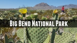 Big Bend National Park Exploration and Visiting Tips