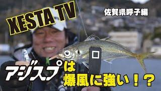 XESTA TV XESTAアジスプ 佐賀県呼子編