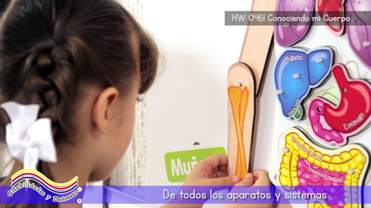 Didáctico Inicial Educación Material Y Preescolar Para T3F1lKJc