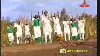 Boontuu Jimmaa DireTube Video by Zeeynuu Mahbuub