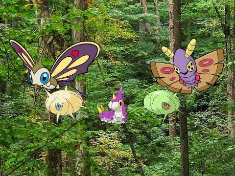 Pokemon Y Shiny Hunt: Episode 40 (Masuda Method) Wurmple ...  Pokemon Y Shiny...
