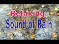 Sound of Rain on an Umbrella - Relaxation