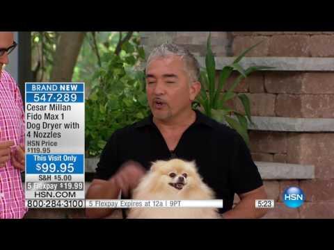 HSN | Pet Solutions featuring Cesar Millan Premiere 04.18.2017 - 10 AM