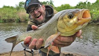 Ловля крупного ЯЗЯ фидером на малой реке