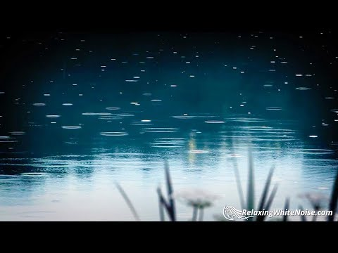 Rain on Pond White Noise | Sleep, Study, Focus, Soothe Baby with Relaxing Rainstorm Sound | 10 Hours