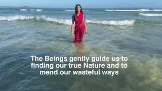 Know who you are/ Moana/ Nehha Bhatnagar