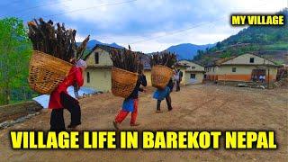 Nepali Village Life    My Village    IamSuman