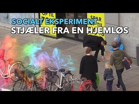 STJÆLER FRA EN HJEMLØS SOCIALT EKSPERIMENT