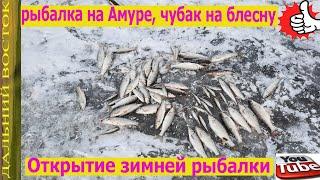 Рыбалка на реке Амур на чубака блесной Открытие зимней рыбалки