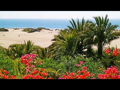 Calimeros  Am weißen Strand von Maspalomas