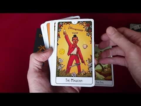 This Might Hurt Tarot vidéo