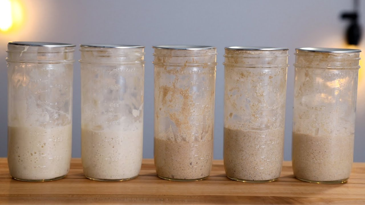 WHAT IS THE BEST TYPE OF FLOUR TO FEED A SOURDOUGH STARTER?