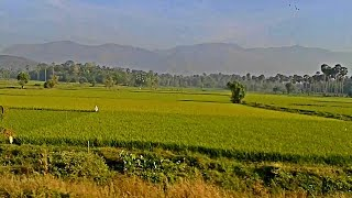 Palakkad - The Granary of Kerala
