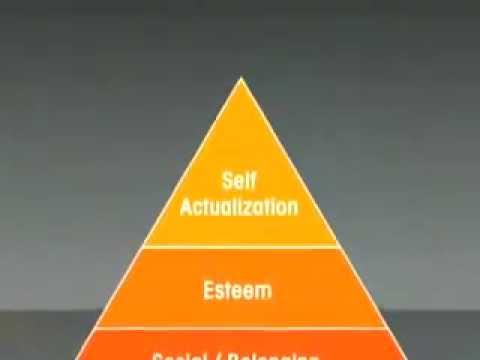 Peak How Great Companies Get Their Mojo From Maslow Summary