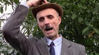 Обращение к мэру Сочи Пахомову и президенту Путину факты про видео / 6