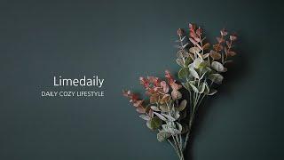 [라임데일리] 오렌지 유칼립투스 조화 꽃꽃이 인테리어 …