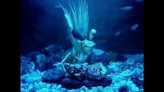 fish tank decoration -  funny drunk skeleton