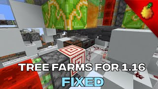 Tree Farms For 1.16