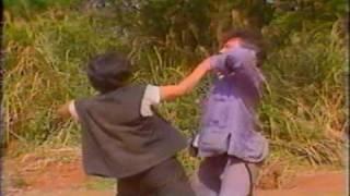 Jack Long, Yuen Hsiang Jen & Li Yi Min...Drunken Fist