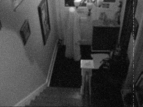 Sakura Falling Live Wallpaper Ghost Falls Down Stairs Youtube