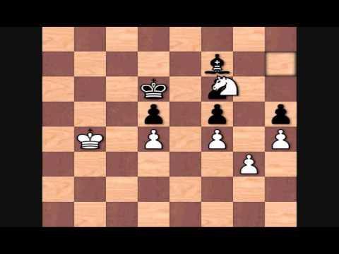 Hikaru Nakamura's Best Games: vs Tiger Hillarp Persson