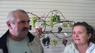Выставка виноградарей в Казани 2016 год