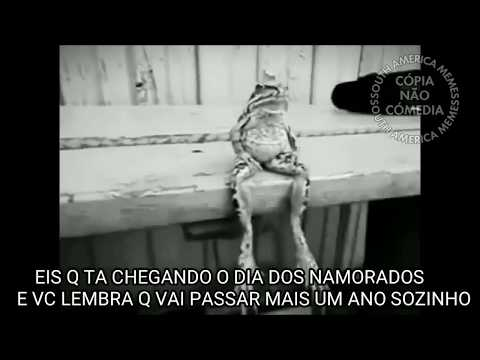 Dia Dos Namorados Sozinho South America Memes Youtube