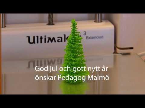God jul önskar Pedagog Malmö
