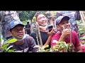 Keseruan Lomba Burung Ssbc Cisaga Feat Ronggolawe Nusantara Juara  Hadiah  Juta  Mp3 - Mp4 Download