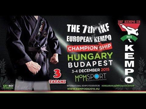 Budapest-2015 Kempo Live Stream TATAMI 3