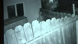 Homeowner shoots intruders