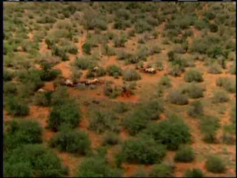 IFAW Tsavo National Park in Kenya