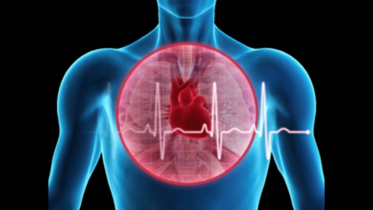 For Life Metaphysics For Life 105 Heart Intelligence Youtube