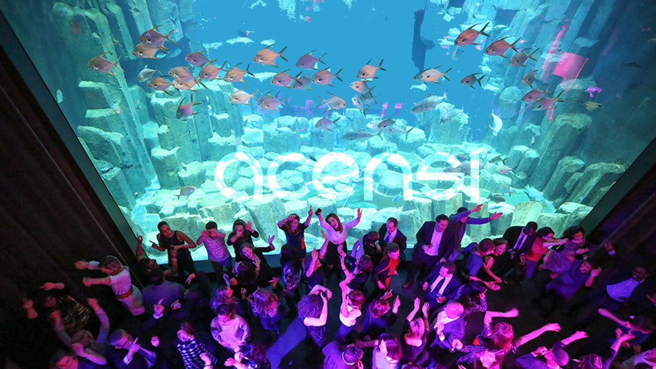 Afterwork ACENSI @Aquarium de Paris - YouTube