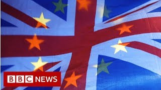 Full Brexit journey in under two minutes - BBC News