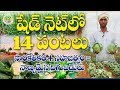 Ap Young Farmer Natural & Techno Farming || N Venu Gopal -  9866352605 || Innova