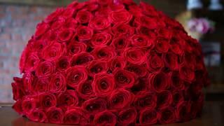 видео 101 розу