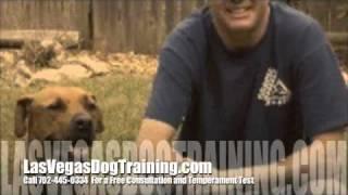 Las Vegas Nevada Dog Obedience Training Schools