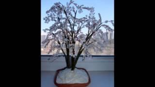 Деревья и цветы из бисера.mp4
