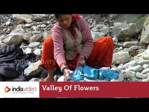Washing in Pushpavathi river, Valley of  Flowers, Uttarakhand