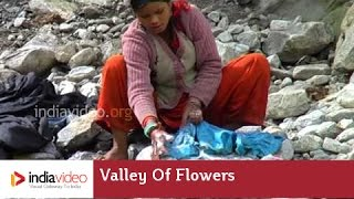 Repeat youtube video Pushpavathi River (Washing Clothes) - Valley Of Flowers - Uttarakhand